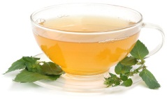 Herbs For Weight Loss - Green Tea